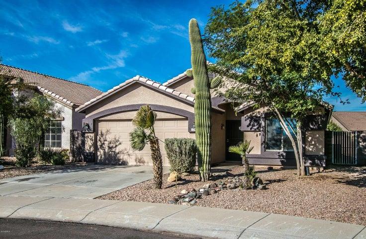 11406 W CAMBRIDGE Avenue, Avondale, AZ 85392