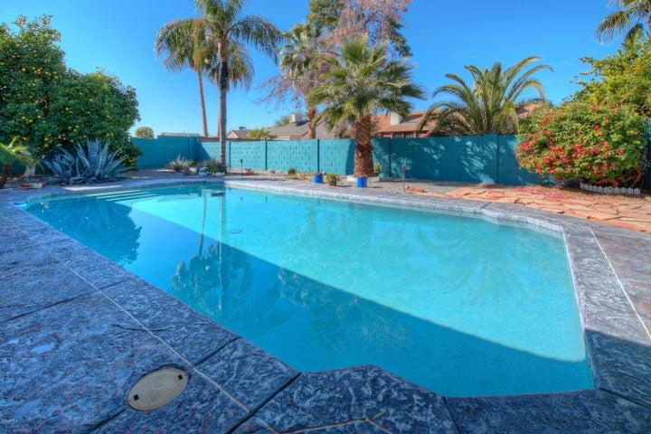 Resurfaced Pool w/New Heyward Pump