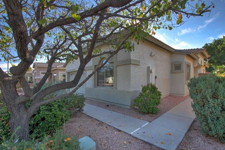 9903 E Farmdale Avenue, Mesa, AZ 85208