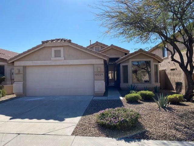 10239 E HILLERY Drive, Scottsdale, AZ 85255