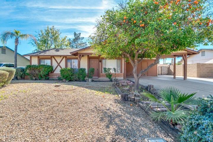 723 W SUMMIT Place, Chandler, AZ 85225