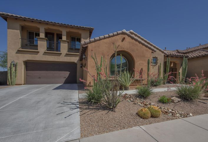 3706 E CAT BALUE Drive, Phoenix, AZ 85050