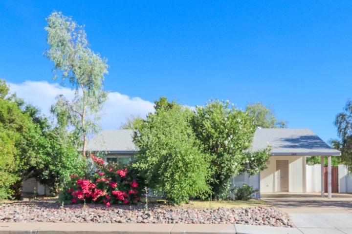 2107 W WESTERN Drive, Chandler, AZ 85224