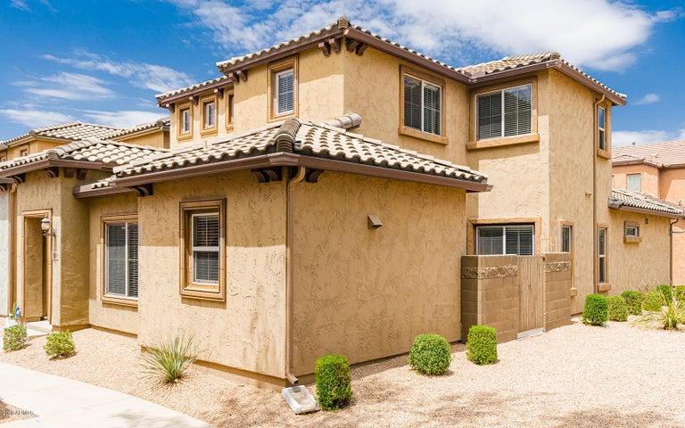 3976 E CAT BALUE Drive, Phoenix, AZ 85050