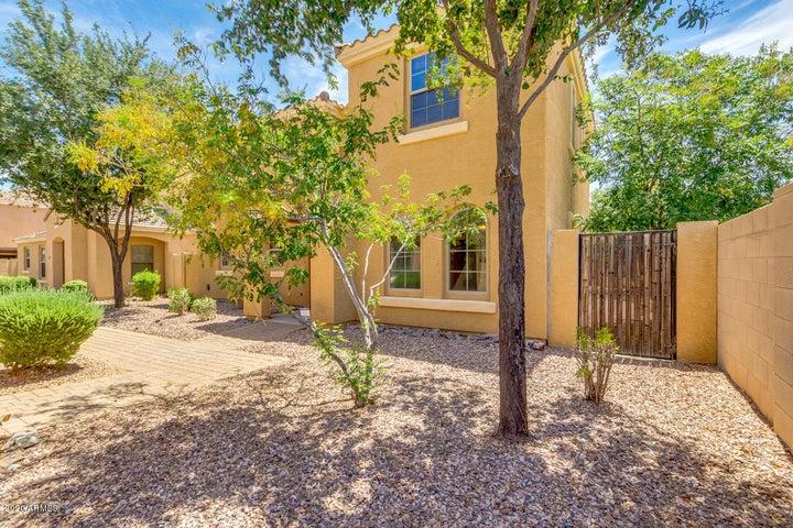 2551 E BART Street, Gilbert, AZ 85295