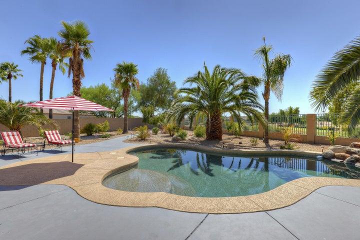 13525 W HOLLY Street, Goodyear, AZ 85395