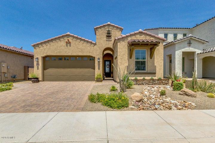 3258 E TINA Drive, Phoenix, AZ 85050