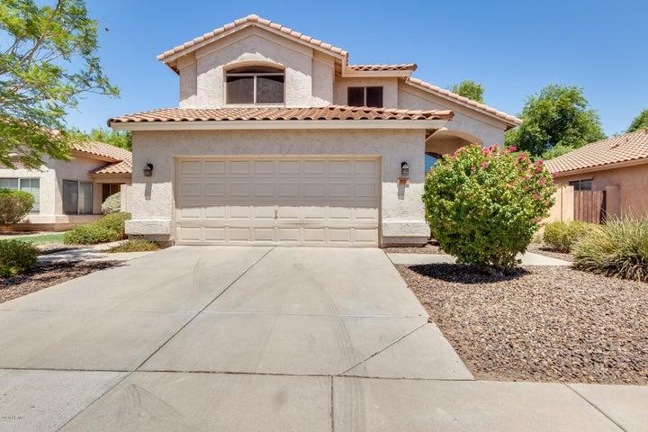 1130 W SEAGULL Drive, Chandler, AZ 85286