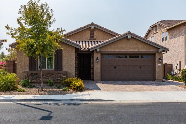 4440 S JASMINE Drive, Chandler, AZ 85249