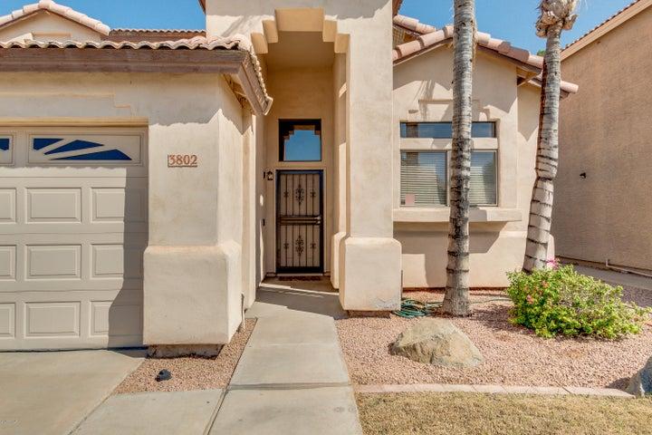 3802 W PARK Avenue, Chandler, AZ 85226
