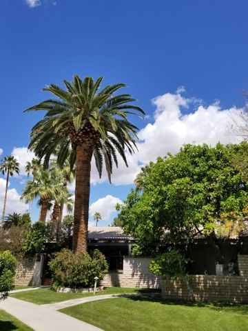 4800 N 68TH Street, 242, Scottsdale, AZ 85251