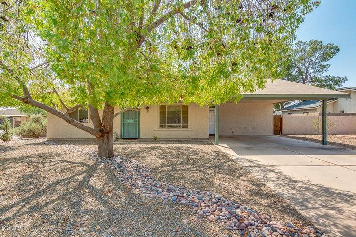 2023 E CINDY Street, Chandler, AZ 85225