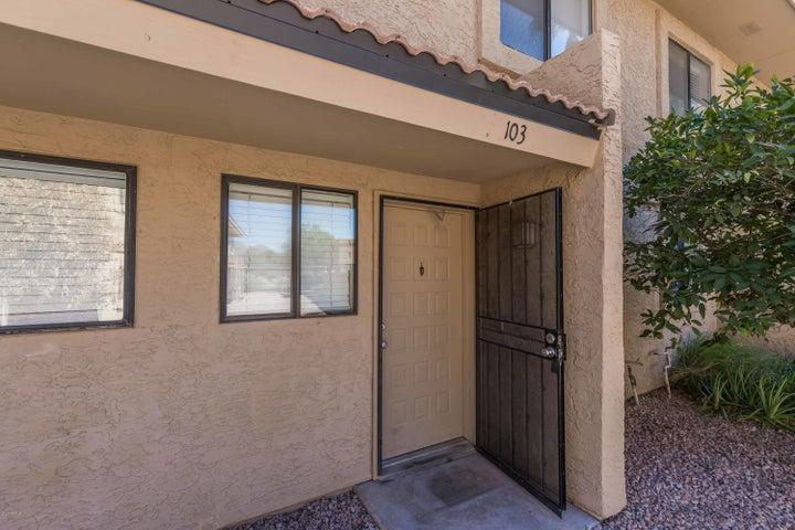 12627 N LA MONTANA Drive, 103, Fountain Hills, AZ 85268