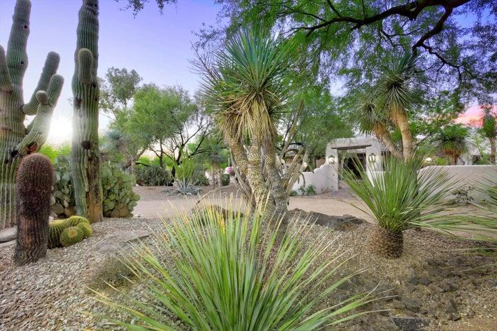 9016 N MORNING GLORY Road, Paradise Valley, AZ 85253