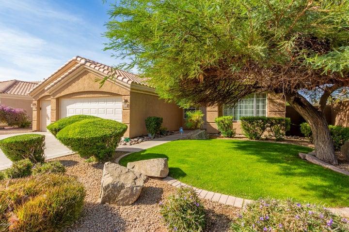502 S PUEBLO Street, Gilbert, AZ 85233