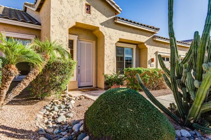 18245 N 49TH Place, Scottsdale, AZ 85254