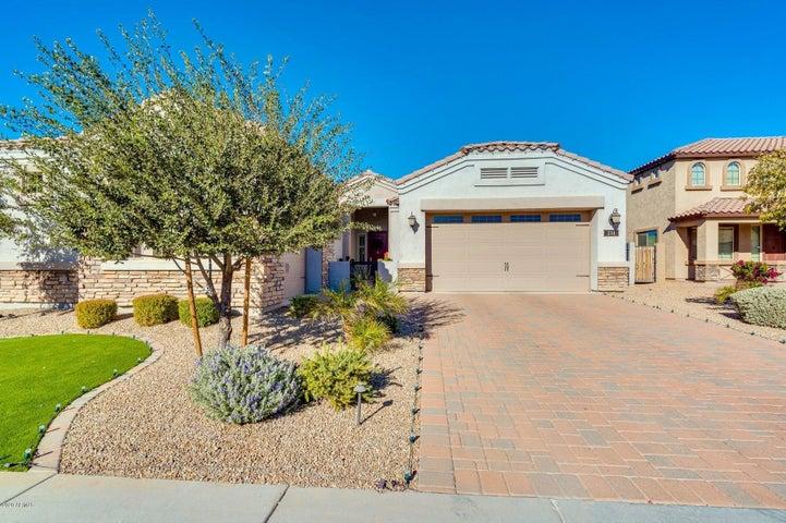 234 E MEAD Drive, Chandler, AZ 85249