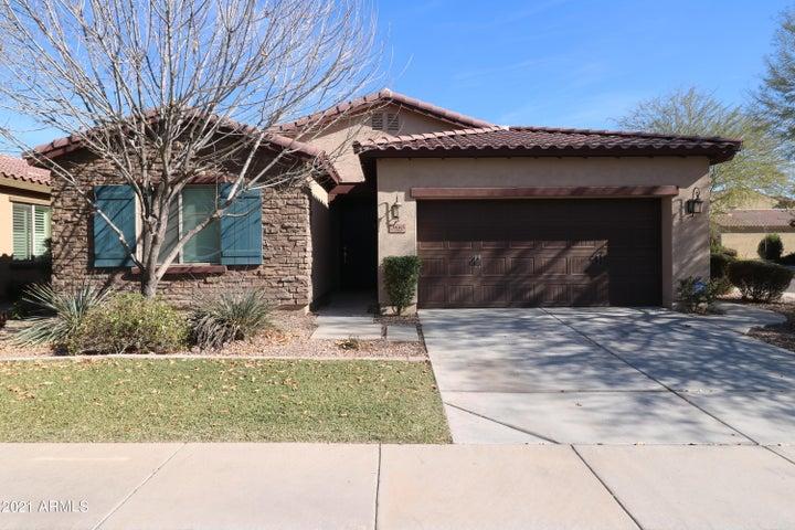 3665 S JASMINE Drive, Chandler, AZ 85286