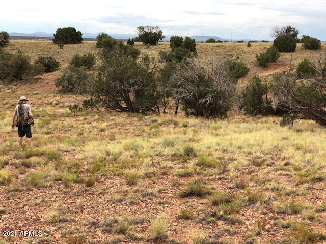 5388 COUNTY LINE Road, 0, Snowflake, AZ 85937