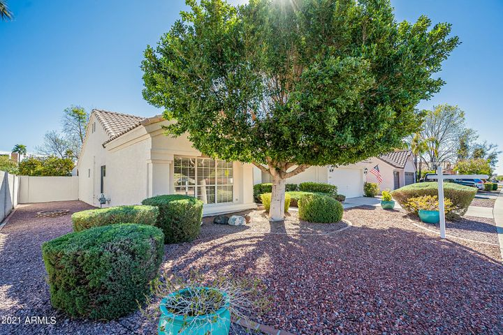 Welcome to 24213 N. 41st Avenue in Adobe Hills.