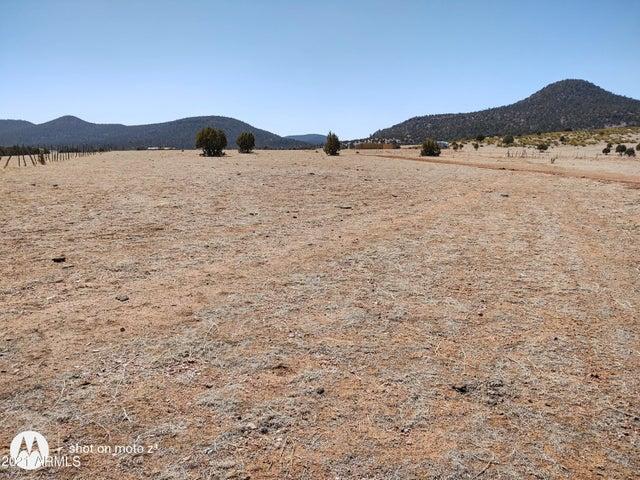 228 S DUTCHMANS Trail, 130, Young, AZ 85554