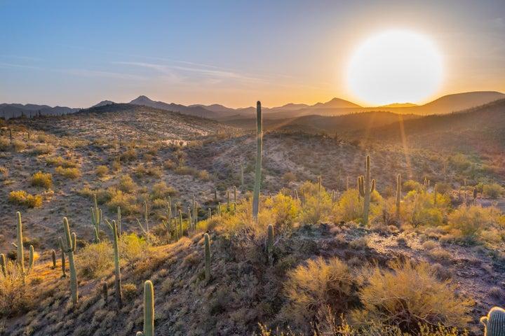 42000 N Sierra Vista Drive, 0, Cave Creek, AZ 85331