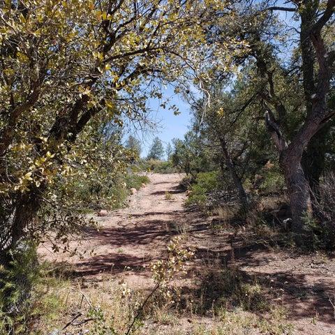 287 W Westridge Drive, S, Young, AZ 85554