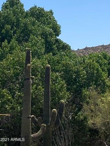 5245 E Rancho Manana, -, Cave Creek, AZ 85331