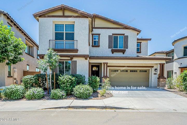 169 E DESERT BROOM Drive, Chandler, AZ 85286