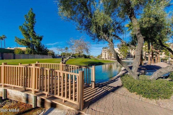 7860 E CAMELBACK Road, 310, Scottsdale, AZ 85251