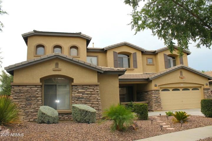 346 W SWAN Drive, Chandler, AZ 85286
