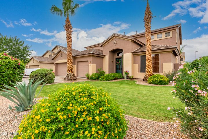 978 E Carla Vista Drive, Gilbert, AZ 85295