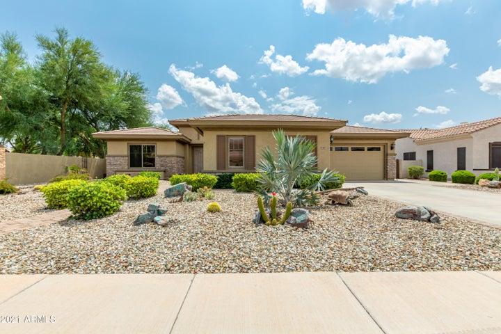 1343 E IBIS Street, Gilbert, AZ 85297