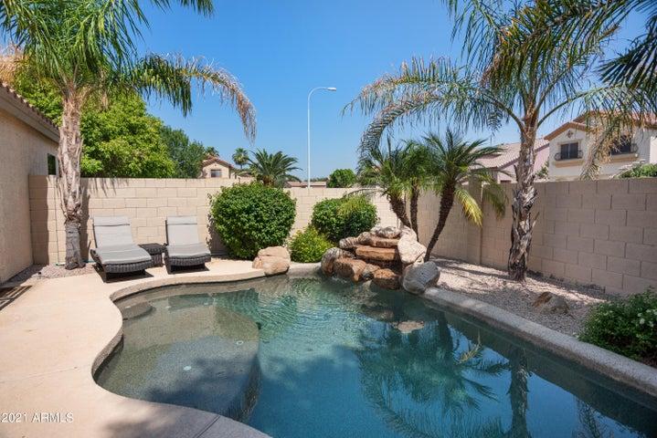 965 W HACKBERRY Court, Chandler, AZ 85248