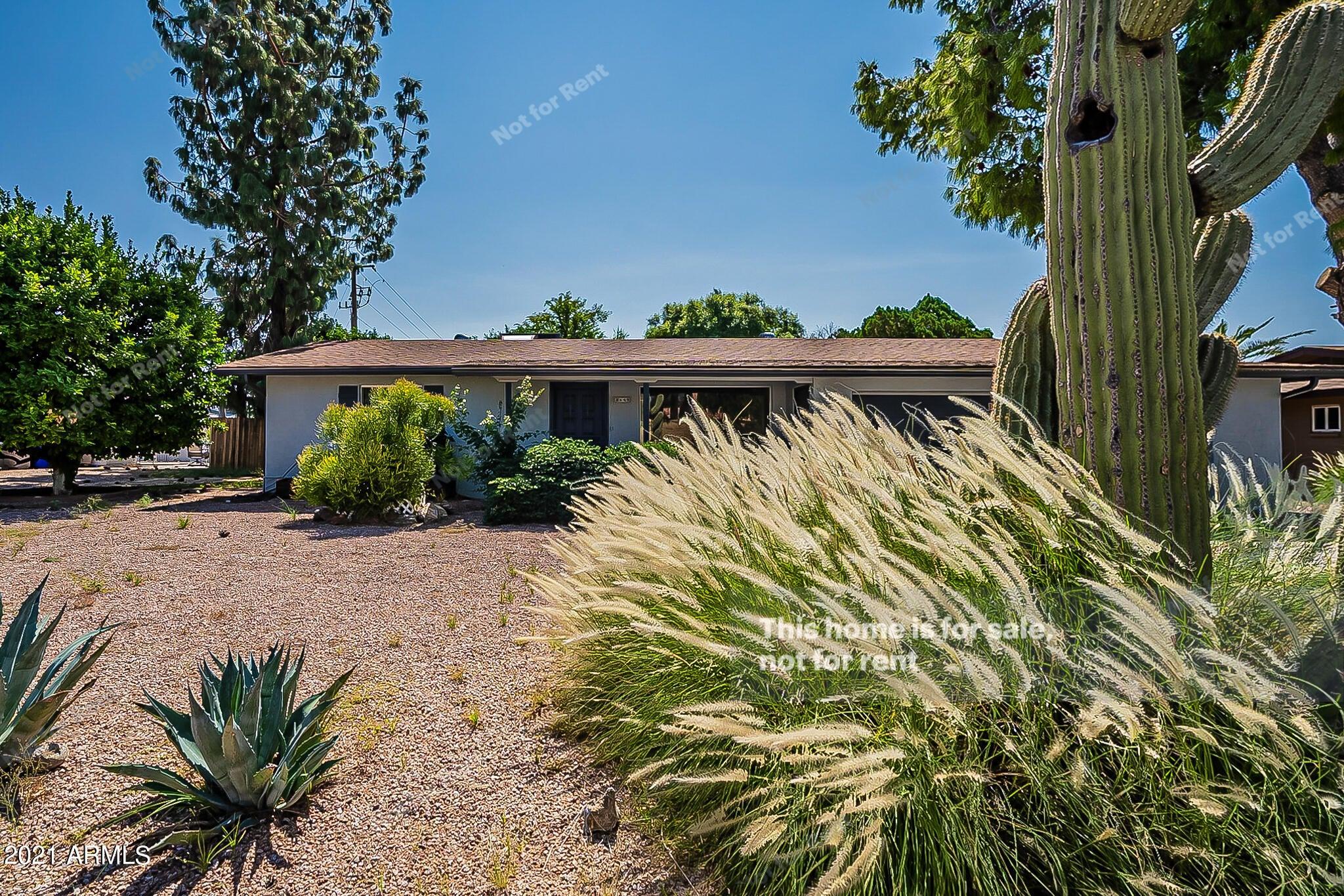 5349 E ADOBE Road, Mesa, AZ 85205