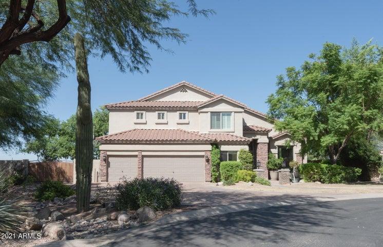 6910 E SADDLEBACK Circle, Mesa, AZ 85207