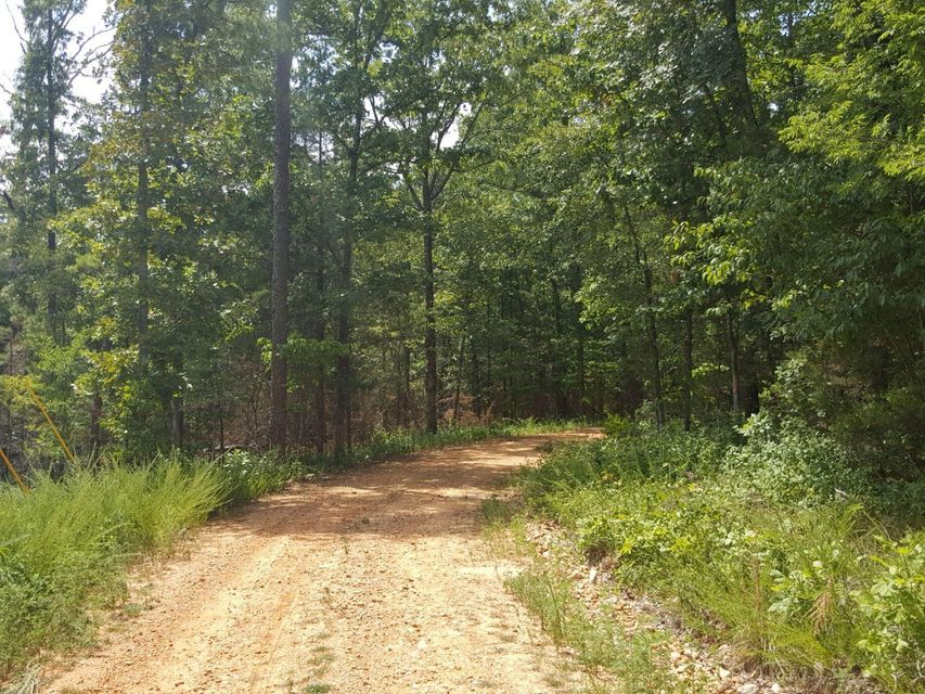 Lot-8-Ripplin-Shoals-Ridge-Melbourne-AR-72556