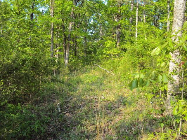 Farm/Ranch/Land for sale –  Batesville,