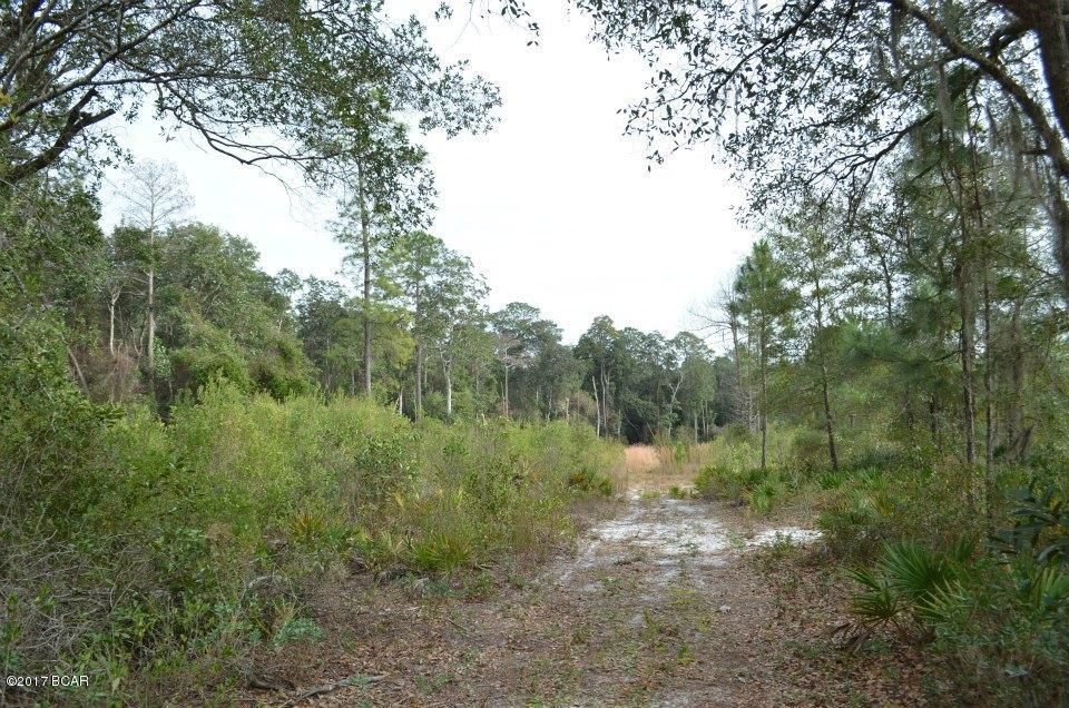 Photo of 0 77 Highway Chipley FL 32428