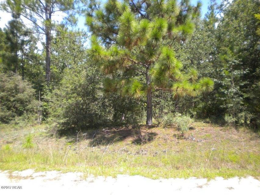 NA CARVER Circle, Alford, FL 32420