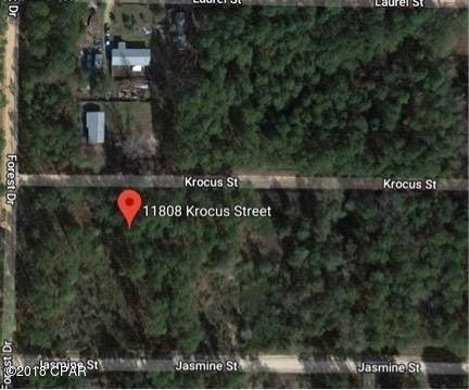 Photo of 11808 KROCUS Street Fountain FL 32438