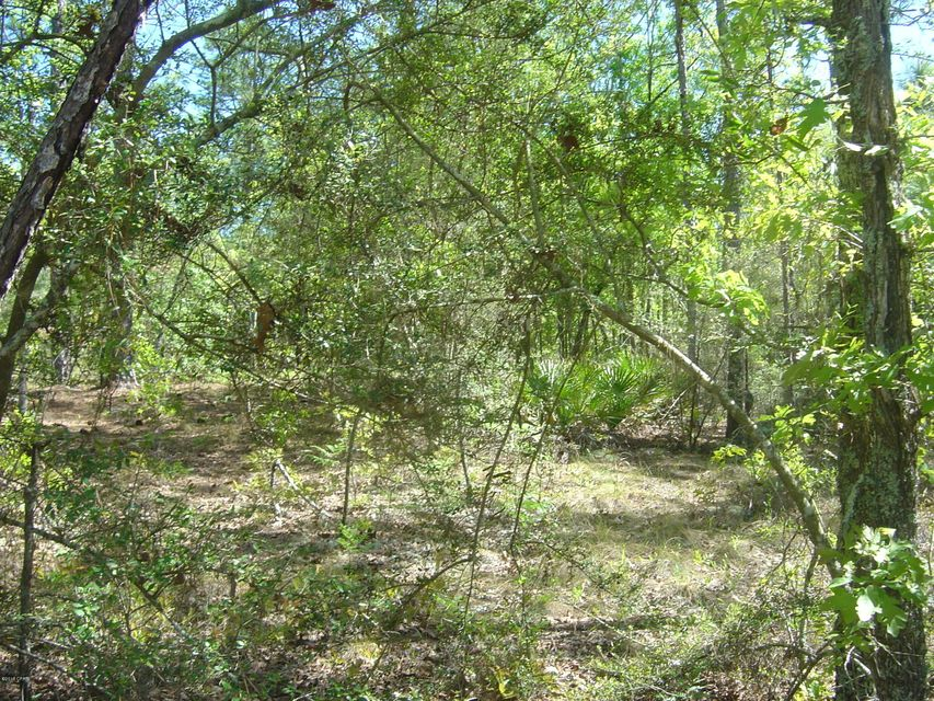 Photo of 00 CANYONLANDS Alford FL 32420
