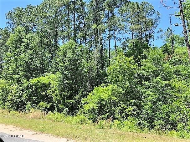 Photo of 0 VIEW Drive Alford FL 32420