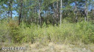 Photo of 000 PERSHING Drive Alford FL 32420