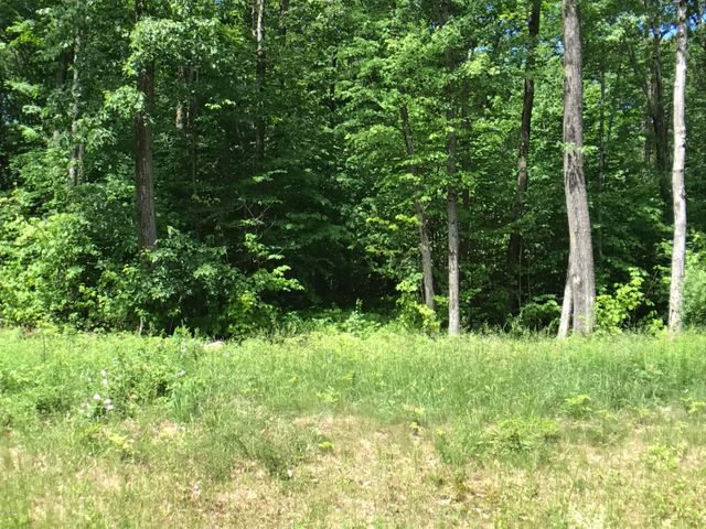 0 Lot #3, Moose Dr, Lee, MA 01238