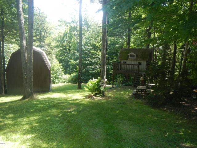 Back yard tree house & shed