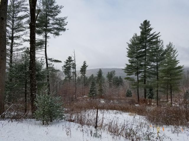 Lot 3 East Rd, Stamford, VT 05352