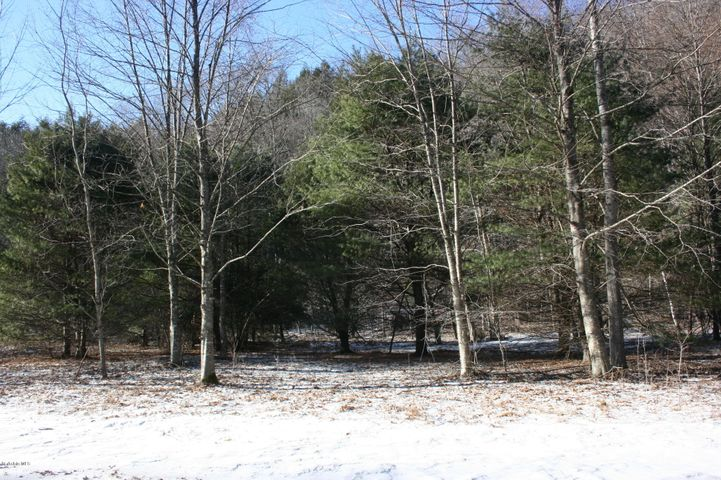 Lot 17 E. River Rd, Middlefield, MA 01243