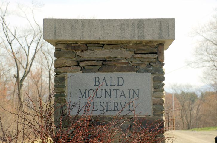 Bald Mountain Rd, Austerlitz, NY 12017