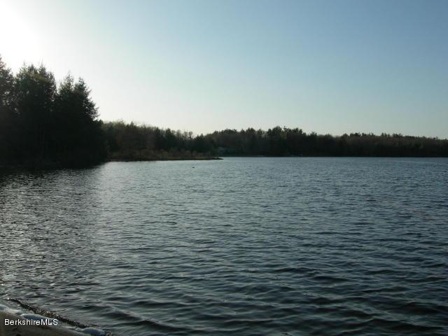 White Lily Pond